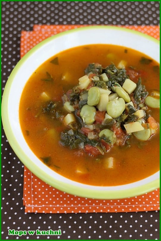 Mops W Kuchni Blog Archive Hiszpanska Zupa Ze Szpinakiem